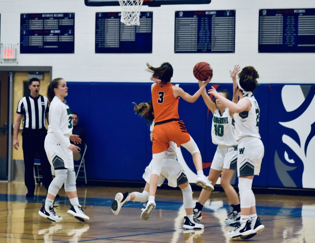 Briar Woods' #3, Camryn Adkins (26 points), did everything she could to keep the Falcons in it.